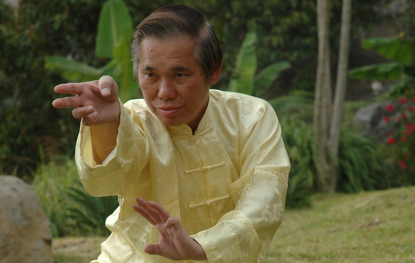 Grandmaster Wong Kiew Kit performing the kung fu pattern 'Swimming Dragon Plays With Water'